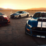 Pictures Ford Shelby 2022