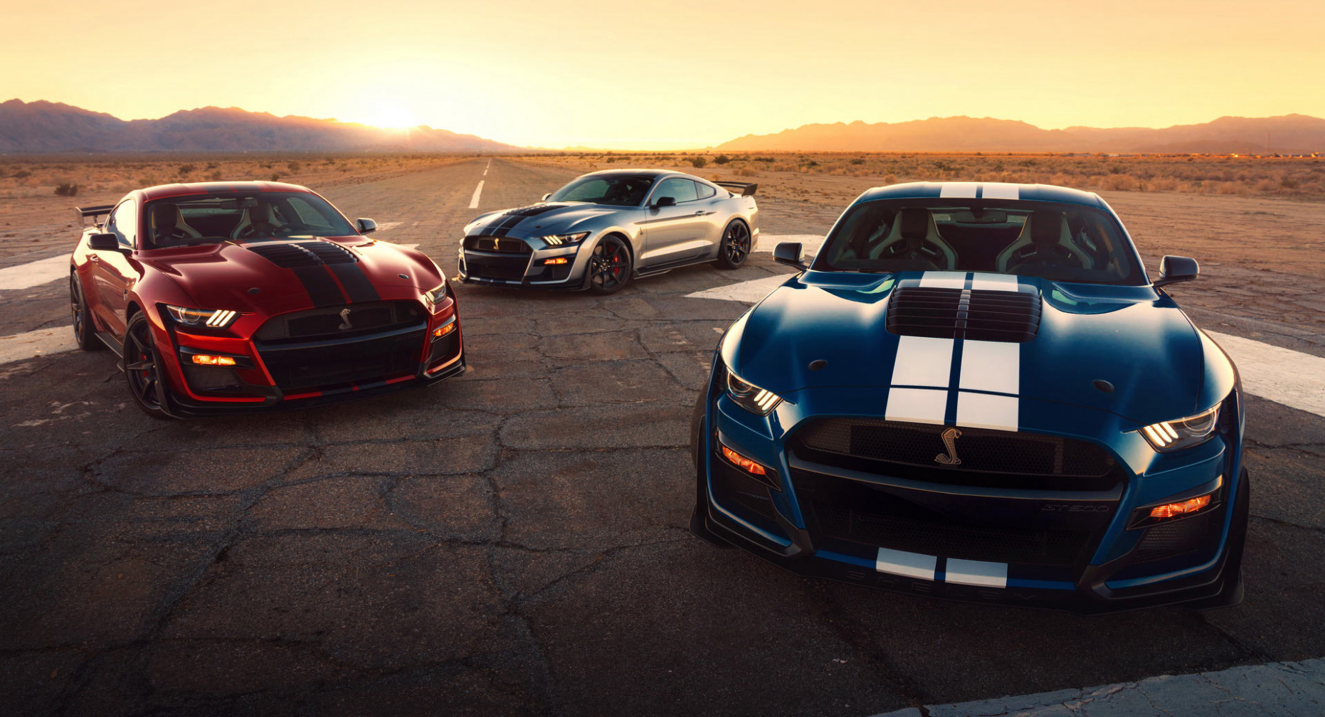 First Drive Ford Shelby 2022