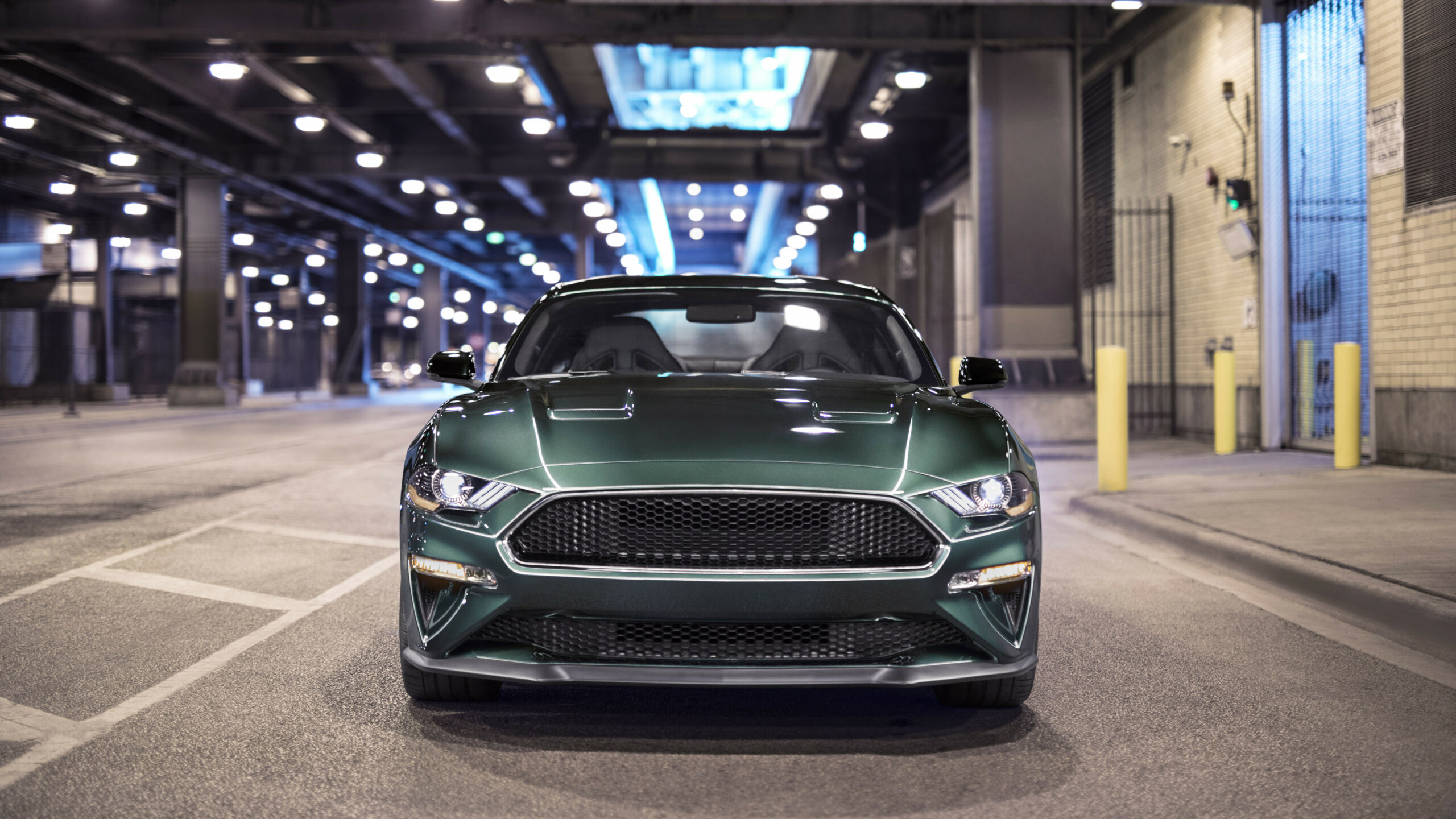 Exterior and Interior 2022 Mustang