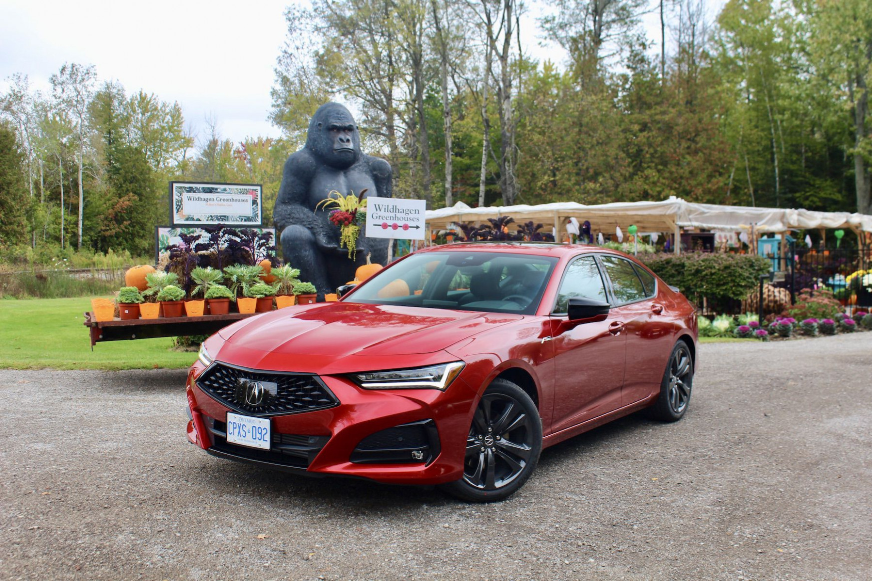 Redesign and Review Acura Canada 2022